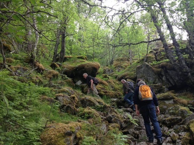Wanderung zu den Wasserfällen bei Kinsarvik